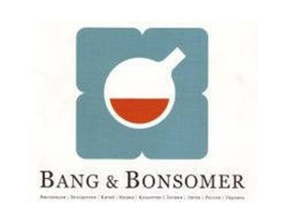 Bang & Bonsomer Group
